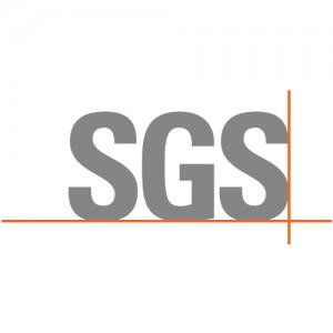 log_sgs